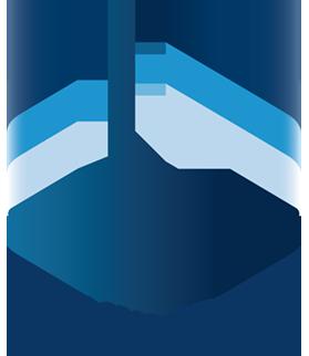 Logo Vallini Sergio